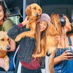 หญิงสาวลาออกจากงาน และเลิกกับแฟน เพื่อท่องเที่ยวทั่วอเมริกากับเจ้าหมา