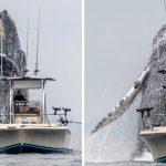 วินาทีอันน่าตื่นตาตื่นใจ!! เมื่อ 'วาฬหลังค่อม' พุ่งตัวขึ้นใกล้เรือประมงในระยะประชิด