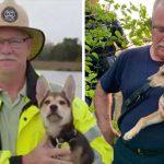 นักดับเพลิงเข้าไปช่วยสุนัขที่ติดในซอกหิน แล้วยังช่วยรับเลี้ยงมันอีกต่างหาก