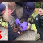 ลูกกวางถูกน้ำซัดเข้าไปติดในช่องระบายน้ำ นักดับเพลิงจึงมาช่วยพามันกลับขึ้นมา