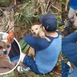 หนุ่มร้องไห้ดีใจหนักมาก เมื่อเจอหมาของตัวเองที่หายไป ในอุบัติเหตุช่วงปีใหม่