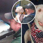 """ชายใจดีช่วยชีวิต """"ลูกหมาที่กำลังใกล้ตาย"""" และชุบเลี้ยงจนมันกลายเป็นสุนัขตัวใหม่"""