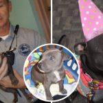 """""""ลูกหมาถูกทิ้ง"""" ได้ตำรวจช่วยเอาไว้ มันจึงตอบแทนด้วยการเป็นความสุขประจำสถานีตำรวจ"""