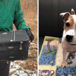 สุนัขถูกยัดใส่กระเป๋าเดินทางและนำมาทิ้งในสวนสาธารณะ โชคดีมีคนมาเจอ มันเลยรอด…