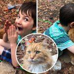 เด็กชายที่เสียเพื่อนขนปุยไป ตื่นเต้นมากๆ เมื่อมีแมวตัวใหม่โผล่มาที่หน้าบ้านและเล่นกับเขา