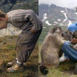 เด็กชายสนิทกับแก๊งมาร์ม็อตแสนขี้อาย กลับไปเที่ยวหาพวกมันทุกปีนานกว่า 10 ปีแล้ว