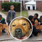 เด็กชาย 4 คนเจอหมาถูกมัด เข้าไปช่วยมันเอง ก่อนขอความช่วยเหลือจากผู้ใหญ่