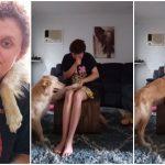ชาวเน็ตตกหลุมรัก กับความอ่อนโยนของหมาบริการ หลังเห็นมันช่วยเจ้าของโรคแพนิค