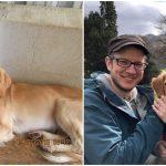 หญิงตกหลุมรักเจ้าหมาตั้งแต่เห็นรูป พามันบินข้ามฟ้าไกล 3,000 กม. มาอยู่ด้วยกัน