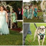 หญิงเชิญหมาปั๊กในศูนย์ฯ เข้าร่วมงานแต่ง เพื่อเป็นเกียรติแก่น้องชายผู้รักปั๊กที่ตายไป
