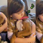 เด็กหญิงร้องเพลงขับกล่อมเจ้าหมา จนมันหลับไปในอ้อมแขนของเธอ น่าเอ็นดูสุดๆ