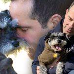ชายถอนเงินบำนาญและเงินเก็บทั้งหมด เพื่อหาเงิน 1.4 ล้านไปผ่าตัดช่วยชีวิตหมา