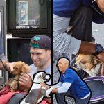 'สัตวแพทย์หนุ่ม' เดินทางไปทั่วรัฐแคลิฟอร์เนีย เพื่อช่วยสัตว์เลี้ยงของคนไร้บ้านแบบฟรีๆ
