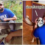 หมาหายจากบ้านไปนาน 3 ปี ส่ายหางและร้องด้วยความดีใจ เมื่อเจ้าของมารับตัวมัน