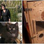คุณตาทำคอนโดแมวแฮนด์เมด ให้แมวจรจัดกว่า 100 ตัวใช้พักพิง ตอนนี้ก็ยังทำอยู่