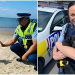 มัดรวม 'โพสต์สัตว์ขนปุย' จากเพจ 'ตำรวจนิวซีแลนด์' มีแต่รูปถูกใจคนรักสัตว์ทั้งนั้น