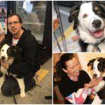 หมาพยายามบอกให้พนักงานร้านสัตว์เลี้ยงรู้ ว่ามันโดนลักพาตัวมา มันเลยรอดมาได้