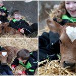 เจ้าวัวเปี่ยมรัก เกิดในวันแห่งความรักยังไม่พอ ยังมีปานรูปหัวใจกลางหน้าผากด้วย