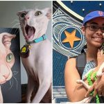 พบกับเจ้า Dobbs แมวหนังไก่ที่ดูเหมือน Dobbie แถมยังถ่ายรูปขึ้นสุดๆ
