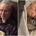 แมวเข้าไปกอดคุณปู่ ซึ่งเป็นโรคอัลไซเมอร์ เพราะรู้ว่าตัวเองคือความสุขเดียวของเขา