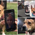 หมาได้กลับมาเจอเจ้าของ เพราะเธอเห็นรูปของมัน ติดอยู่บนกระป๋องเบียร์