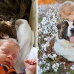 21 ภาพสุดอบอุ่นระหว่างเด็กๆ กับสัตว์เลี้ยง มิตรภาพอันบริสุทธิ์ที่เห็นแล้วต้องยิ้มตาม