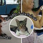 """""""แมวจร"""" ถูกพ่อสาดน้ำไล่ทุกวัน แต่มันไม่ยอมแพ้ อดทนนานนับเดือน จนพ่อยอมเป็นทาส"""