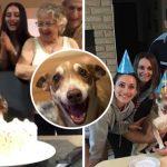 ตูบวัย 13 ปี ตื่นเต้นหนักมาก เมื่อทุกคนในครอบครัวมารวมตัวกันเพื่อจัดปาร์ตี้วันเกิดให้