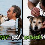 เจ้าของพาสุนัขแก่ที่เป็นโรคข้อต่ออักเสบ ไปลอยน้ำด้วยกันทุกวัน เพื่อบรรเทาความเจ็บปวด