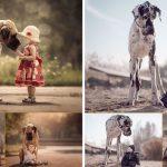 รวมภาพ 'เด็กน้อย' กับ 'สุนัขตัวโต' ที่ทำให้เห็นว่าขนาดตัวไม่ใช่อุปสรรคของมิตรภาพ