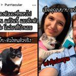 """18 สแนปแชทฮาๆ ของเหล่า """"เจ้านายขนปุย"""" ที่พิสูจน์ว่าแมวสามารถทำให้คุณยิ้มได้เสมอ"""