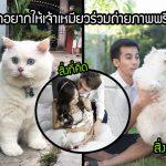 คู่รักอยากให้น้องแมวเป็นส่วนหนึ่งของภาพพรีเวดดิ้ง แต่ภาพที่ได้ต่างกับสิ่งที่คิดอย่างลิบลับ