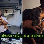ช่างตัดขนสัตว์ต้องปิดกิจการชั่วคราว เขาจึงเดินสายให้บริการฟรีเพื่อสุขภาพดีที่ของสุนัข