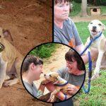 ลูกหมาวัย 8 เดือน ถูกจับล่ามโซ่เพื่อรอขึ้นสังเวียนสุนัข ยิ้มขอบคุณเมื่อได้รับการช่วยเหลือ