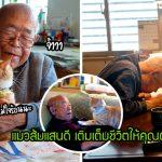 คุณตาขี้หงุดหงิดวัย 94 ปี หมดหวังในการชีวิต เจ้าแมวส้มจึงเข้ามาทำให้ชีวิตเขามีสีสันอีกครั้ง