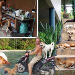 คู่รักจากลิทัวเนียย้ายมาอยู่ไทยถาวร เพื่อช่วยเหลือสุนัขจรจัดและสุนัขพิการที่ถูกละเลย